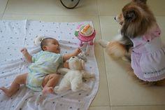 http://ameblo.jp/coonana07/entry-12182508296.html