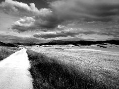 Camino fluffs