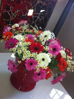 Springflowers Plants, Plant, Planets