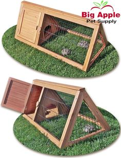 Outdoor Tortoise Pen Cage Turtle House Play Backyard Indoors Pets Animal Home Tortoise Cage, Tortoise House, Tortoise Habitat, Baby Tortoise, Sulcata Tortoise, Tortoise Turtle, Box Turtle Habitat, Turtle Cage, Turtle Neck