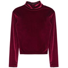 Soft High Neck Top ($37) ❤ liked on Polyvore featuring tops, crop tops, shirts, sweaters, velvet, slim fit shirts, long-sleeve shirt, high neck top, velvet crop top and cropped shirts