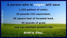 Saving the Planet, One Meal at a Time animal agriculture as the leading cause of species extinction, water pollution, ocean dead zones and habitat destruction2, and with the death spiral of the ecosystem ever more pronounced, becoming vegan is the most important and direct change we can immediately make to save the planet and its species. http://m.truthdig.com/report/item/saving_the_planet_one_meal_at_a_time_20141109
