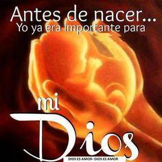 Salmo 139:13 Porque tú formaste mis entrañas; Tú me hiciste en el vientre de mi madre. ♔