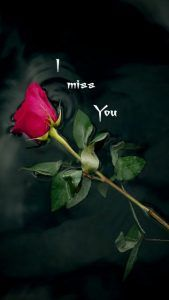 To my dear Joe ♡♡♡, l miss you♡. To my dear Joe ♡♡♡, l miss you♡. To my dear Joe ♡♡♡, l miss you♡. L Miss You, Miss My Mom, I Miss You Quotes, Missing You Quotes, Best Love Quotes, I Love You Images, Love You Gif, My Love, Tu Me Manques