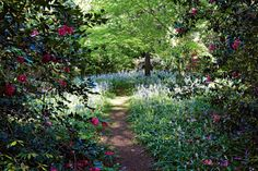 photography Michael Wee; stunning spring gardens.