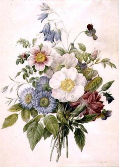A Spray of Summer Flowers, 1820 by Louise D'Orleans
