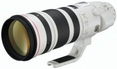 Review – Canon EF 200-400 f/4L IS 1.4x