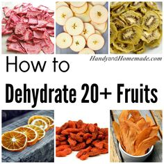 20  How To Dehydrate Fruit Recipes