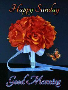 Sunday Gif, Sunday Morning, Happy Sunday, Good Morning Images, Good Morning Quotes, Happy Tuesday Quotes, Afternoon Quotes, Good Morning Coffee, Blue Orchids