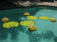 Floating flower arrangements, popular pool decoration, loving this hoop idea! via Mille Fiori, real floating florals Floating Pool Decorations, Pool Wedding Decorations, Floral Decorations, Wedding Centerpieces, Floating Flowers, Floating Candles, Pool Candles, Sommer Pool Party, Magazine Deco