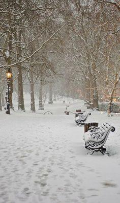 ~Green Park in Snow, London~