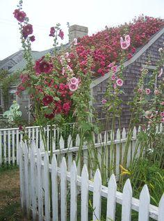 Идеи оформления забора в вашем саду.. Источник