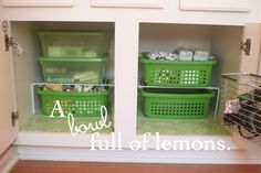 Day #14 ~ Getting Organized Challenge (Under the Bathroom Sink) | A Bowl Full of Lemons