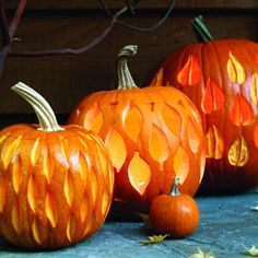 How to carve elegant pumpkins | Harlequin leaves | Sunset.com