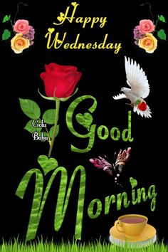 Good Morning Post, Cute Good Morning, Good Morning Coffee, Good Morning Flowers, Good Morning Images, Wednesday Morning Greetings, Good Wednesday, Good Day Quotes, Morning Quotes