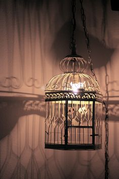 Vintage bird cage lamp.or add some greenery and string lights inside. There is so many things you can do with these.You can even take the door off the cage add a little nesting material and hang from a tree or the porch.I'm sure some little bird will make it it's home.