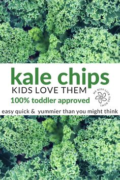 Kale Chips Kids Love Them. Easy, quick and tastier than you might think. A great toddler snack. Not just an alternative hippy food! Vegetable Recipes For Kids, Healthy Meals For Kids, Healthy Snacks, Healthy Eating, Veggie Recipes, Healthy Recipes, Kid Friendly Dinner, Kid Friendly Meals, Toddler Vegetables