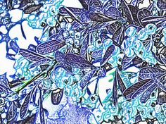 Here is a different berrie bush background look. Sort of a cartoon effect.