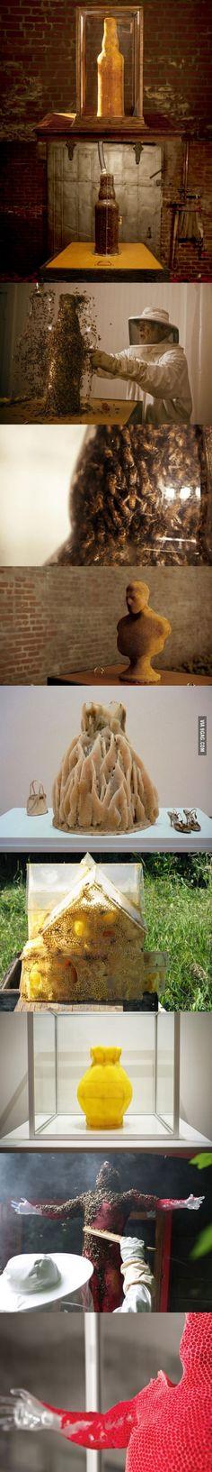 Amazing 3D Sculptures Built by Bees.