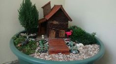 Miniatura garden