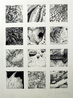 Texture Drawing, Texture Sketch, Gravure Illustration, Ink Pen Drawings, School Art Projects, Ink Illustrations, Pen Art, Elements Of Art, Drawing Techniques