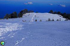 Livadaki plateau, Mt Olympus, Greece Olympus, Greece, Outdoor, Greece Country, Outdoors, Outdoor Games, The Great Outdoors
