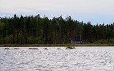 Photo 2014, Marjut Hakkola Family Holiday, Peace, Mountains, Water, Travel, Water Water, Aqua, Viajes, Destinations