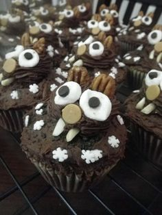Chocolate Groundhog Day Cupcakes