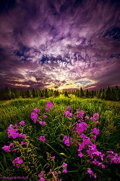My Whole World Begins and Ends With You   Wisconsin Horizons by Phil Koch.