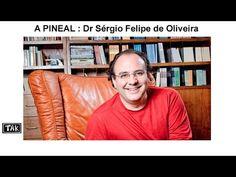 Tak - Glandula Pineal :  Dr Sergio Felipe de Oliveira - YouTube