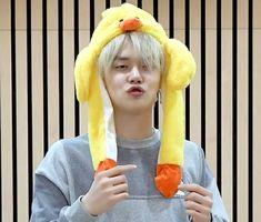 Cute Korean Boys, K Idols, Kpop, Icons, Challenge, Lost, Heart, Videos, Celebrities