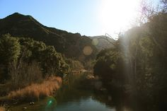 Malibu Creek State Park  (and other trails)