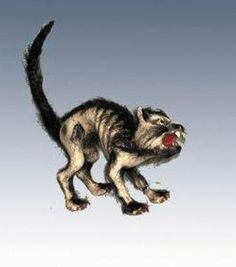 Halloween Cat Prop  #Halloween #Halloween #Prop Halloween Spirit
