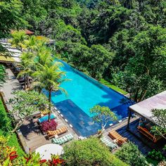 One of our favourite chill spots in Ubud is @junglefishbali ~ Amazing infinity edge pool nestled in the jungle with the surrounding lush greenery. Great staff, drinks, and eats too. Cool vibe and definitely a prime spot to relax while you cool off from the heat. Check it out on your next trip to Bali.