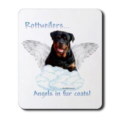 ... happy rottweiler the most friendly cute funny dog and pup angels