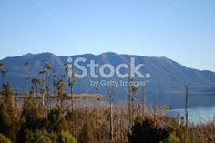 West Coast Waterscape, Lake Brunner, New Zealand Royalty Free Stock Photo