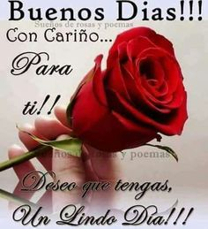 Happy Day Quotes, Morning Love Quotes, Good Day Quotes, Good Morning Messages, Love Messages, Morning Thoughts, Good Morning In Spanish, Good Morning Happy, Good Morning Greetings