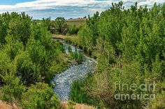 Meander Stream : http://fineartamerica.com/profiles/robert-bales/shop/all/all/all