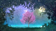 """2 hours of peaceful, relaxing, nature instrumental music: """"New Journeys""""..."""