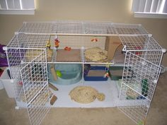 Dogs require training in order to teach them tricks and useful behaviors as well as discouraging them from doing bad things. Diy Bunny Cage, Diy Guinea Pig Cage, Bunny Cages, Pet Guinea Pigs, Rabbit Cages, Rabbit Cage Diy, Hamsters, Bunny Care Tips, Indoor Rabbit Cage