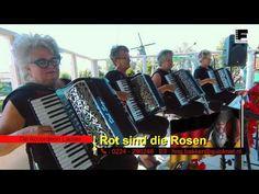 Rot sind die rosen - YouTube Bergen, Accordion Music, Youtube, Country Music, Dancer, Album, Park, My Love, Oklahoma