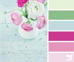 ranunculus hues  Color Palette by Design Seeds