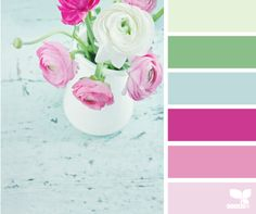 Ranunculus Hues ~ the soft green and blue with that pop of bright pink...nice