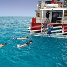 Cairns Dive Centre Great Barrier Reef dive and snorkel day tours aboard MV Reef Kist. Great value. Book online today.