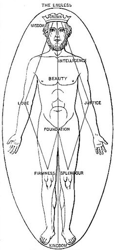 """""""Man"""" diagram with the power points of the Tree of Life on the body. Notice the structural similiarities to the body of man with the Kabbalistic diagram of the Tree of Life on the right. Rose Croix, Magic Symbols, Occult Art, Demonology, Mystique, Ancient Aliens, Archetypes, Tree Of Life, Sacred Geometry"""
