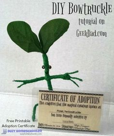 DIY Bowtruckle tutorial from GeekDad and Free Printable Adoption Certificate from Suzy Homeschooler