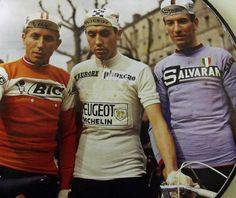 CYCLING ART BLOG: Eddy Merckx