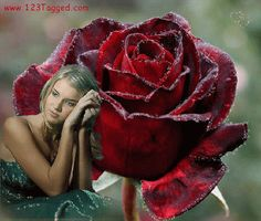 Dark Roses Graphics and GIF Animation for Faceboook