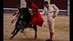 Las Ventas (Madrid). Se lidiaron novillos de Aguadulce, Herederos de José María Aristrain (3º y 6º) y un sobrero de Ave María (5º bis), de buenas hechuras y ...