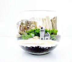 glass moss - Cerca con Google